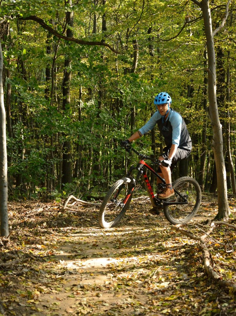 Mountainbiken im Wienerwald: 1.250 Kilometer werden neu