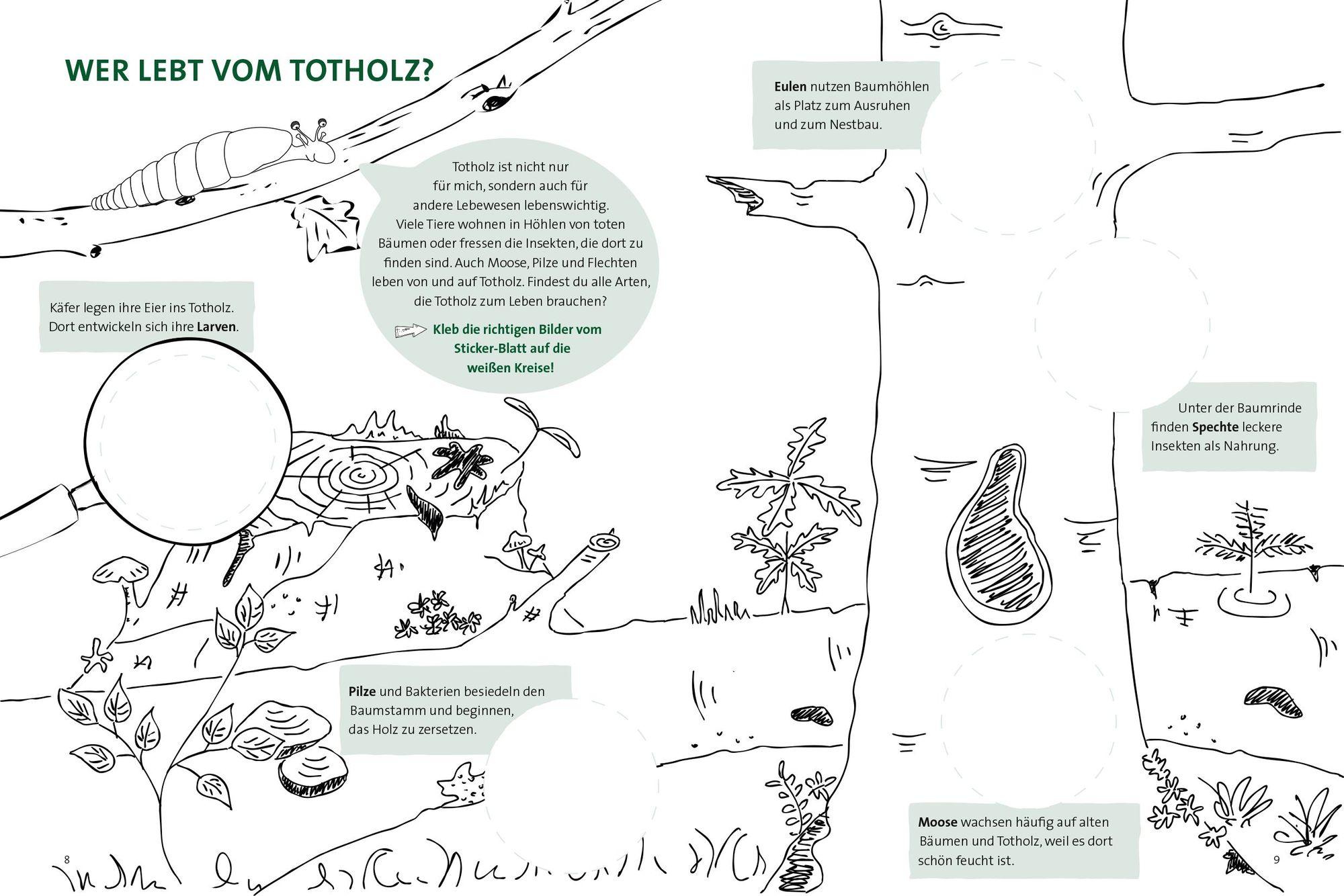 Totholz Broschuere Www Bundesforste At